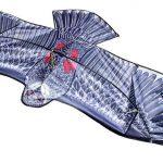 eng_pl_Great-Eagle-Flying-Dragon-for-Kids-Adults-Huge-200-x-83-cm-Wingspan-Dragonfly-Lifelike-Black-8560-13685_4